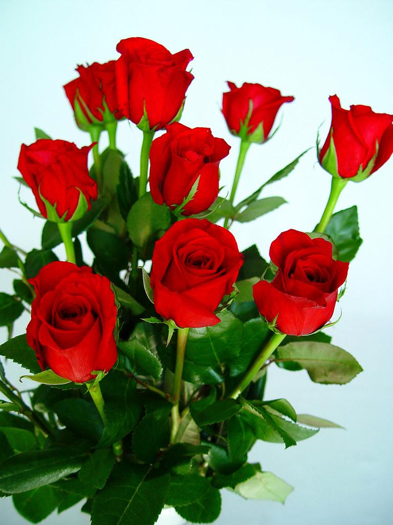 Ramo de rosas naturales